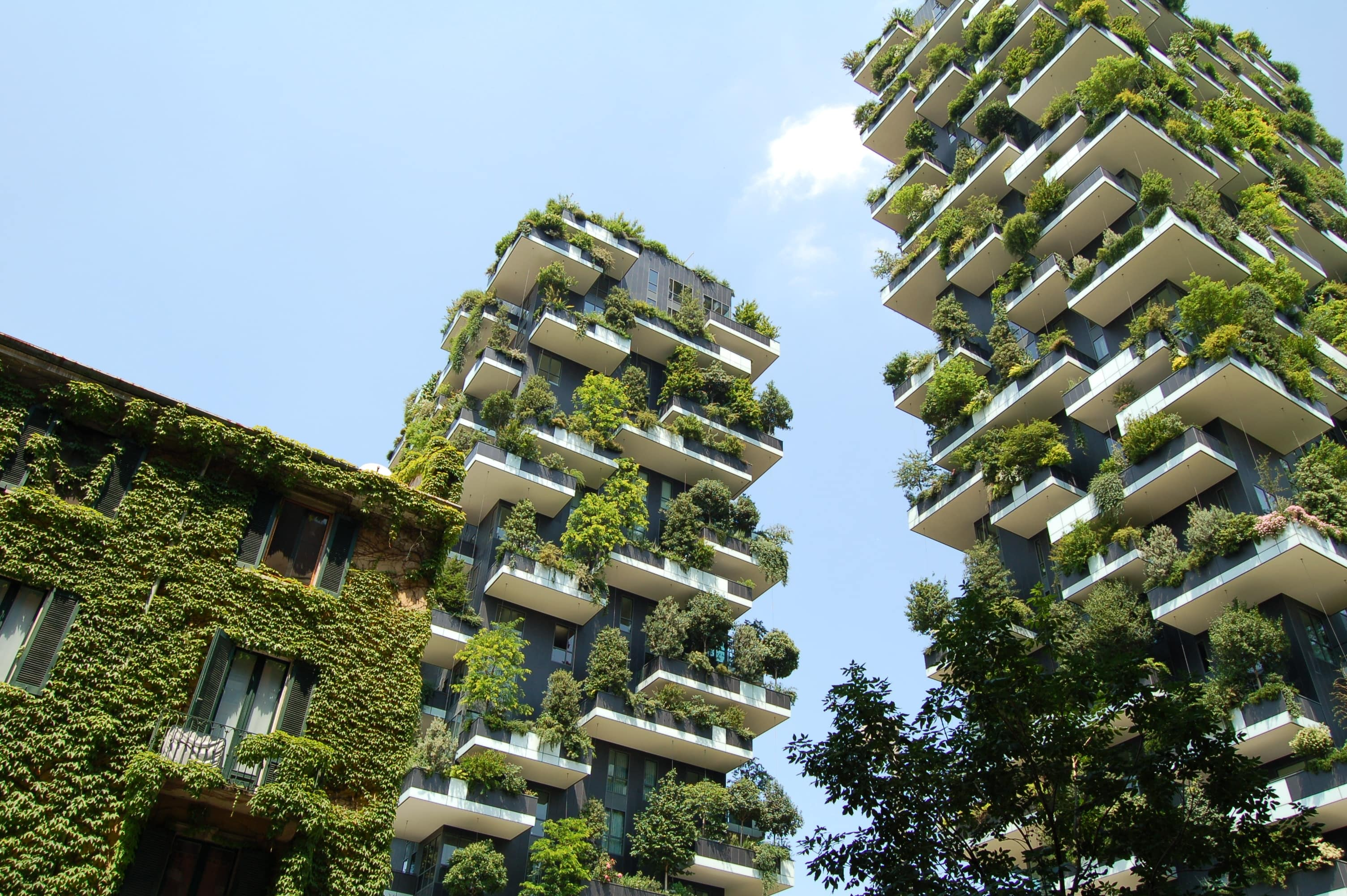 green building with foliage