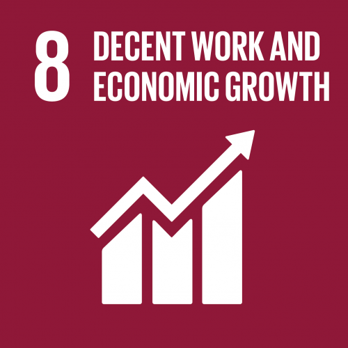 sustainable development goal 8
