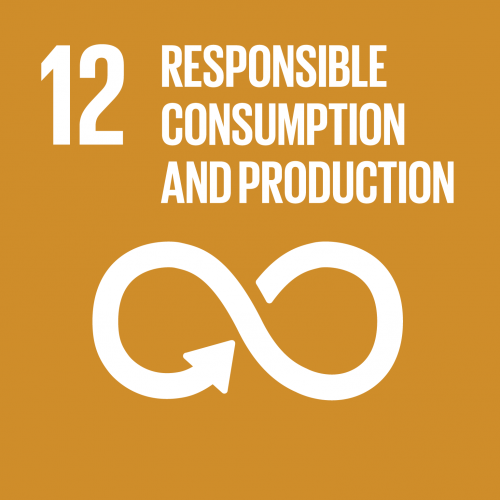 sustainable development goal 12